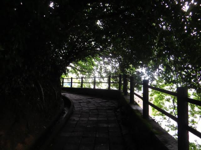 kagoshima_mountain_path