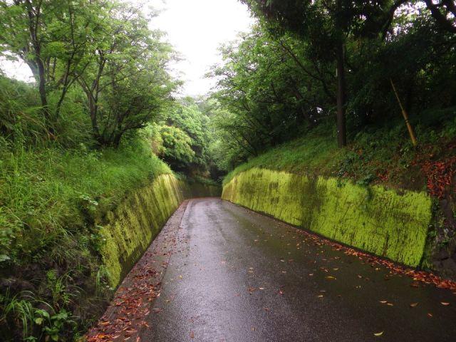 kagoshima_road